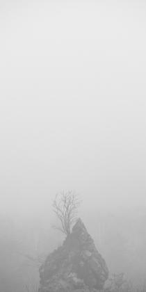 into the fog #02